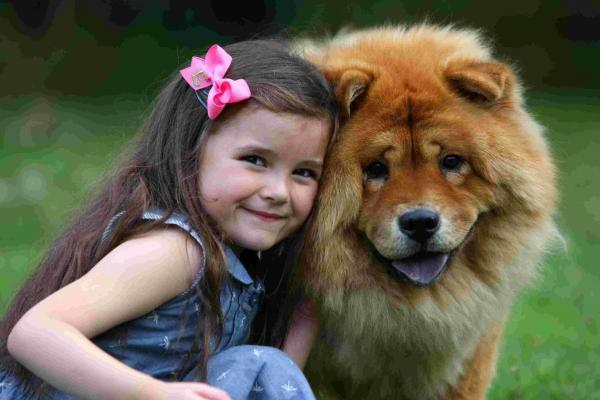 Shaggy dog story earns six year old first book deal