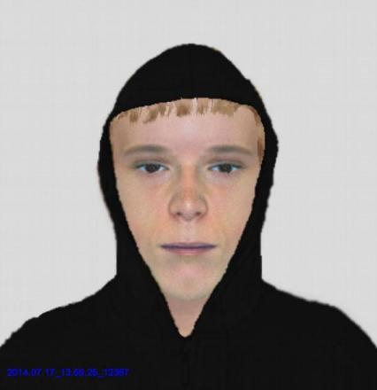 The e-fit released by police.