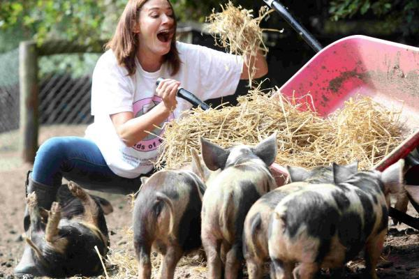 Actress Sarah Parish spent a morning mucking out kune kune pigs at Longdown Activity Farm to publicise a sponsored walk