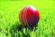 Hampshire Cricket League needs new chairman