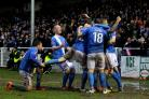 Eastleigh celebrate their goal against Bolton (Pic by Stuart Martin)
