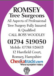Romsey Tree Surgeons