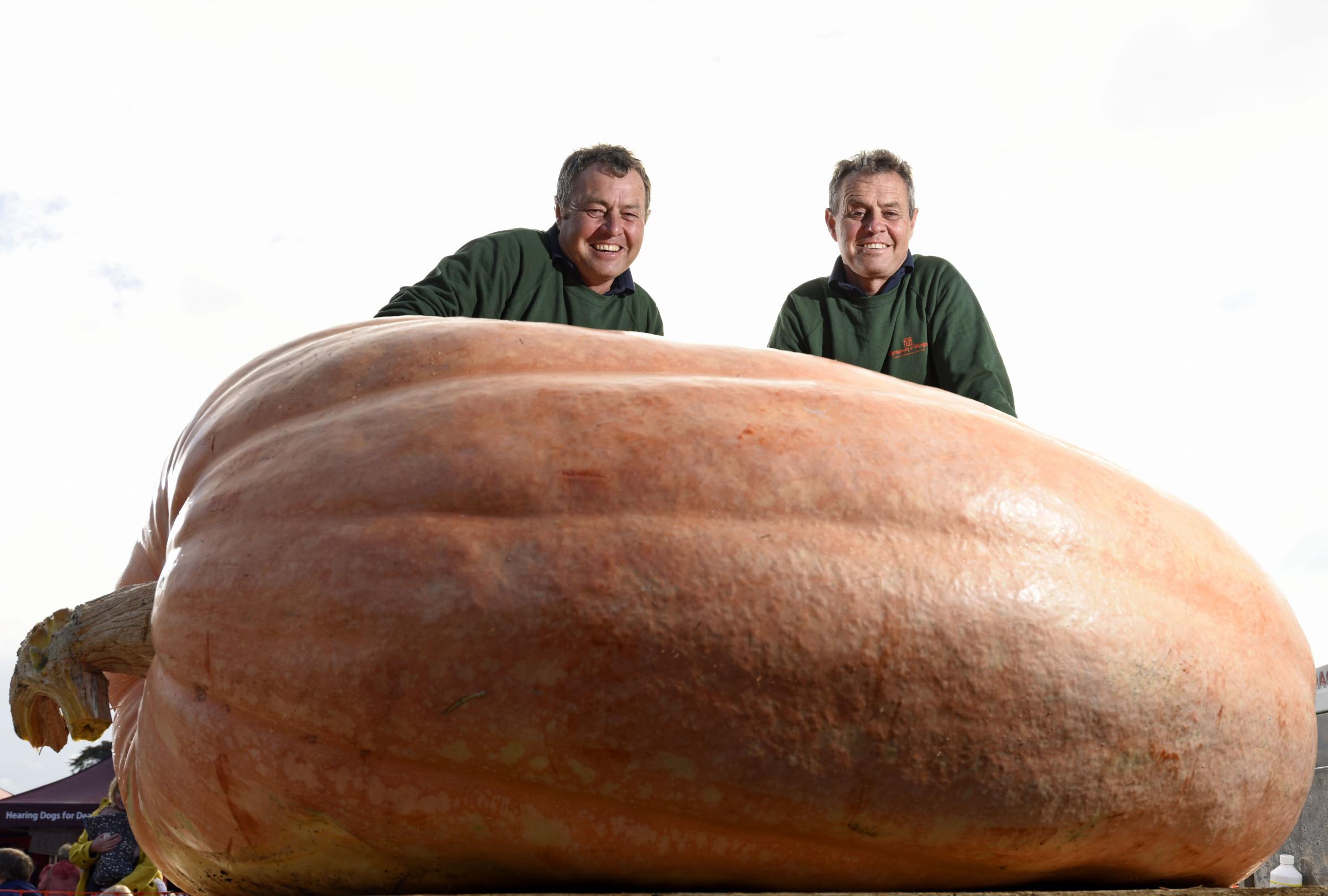 Анал фото овощи гиганты92