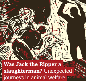 Was Jack the Ripper a slaughterman? Unexpected journeys in animal welfare:  Inaugural lecture by Professor Andrew Knight