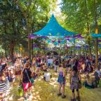 Daily Echo: Boomtown Fair.