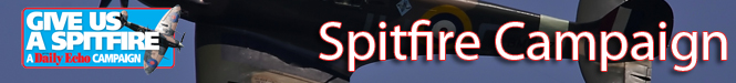 Daily Echo: Spitfire Banner