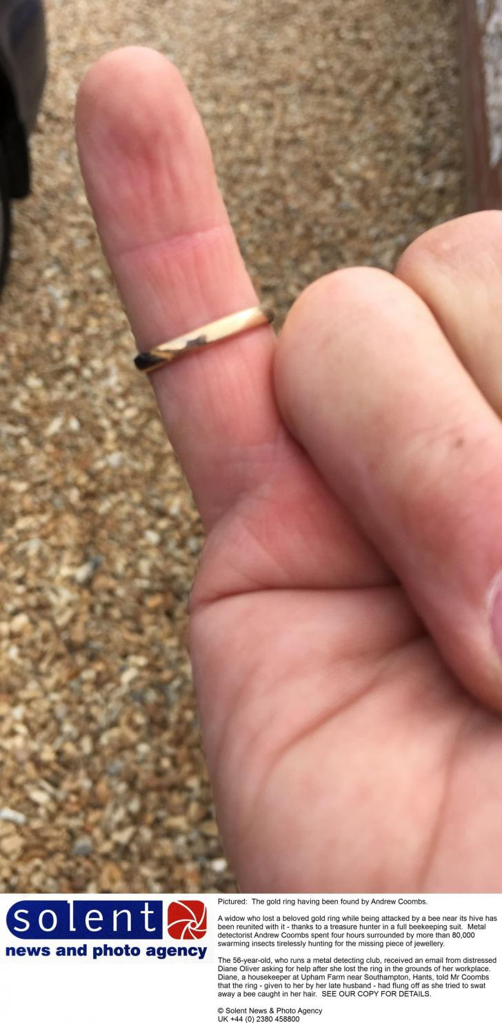 Widow loses wedding ring after being attacked by bee - but there\'s a ...