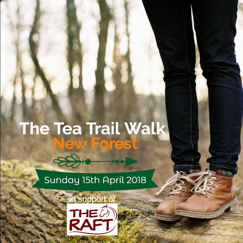 The Tea Trail Walk New Forest