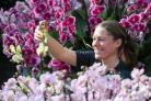 Student Olivia Steed-Mundin puts the finishing touches to exhibits at the Orchids Festival (Andrew Matthews/PA)