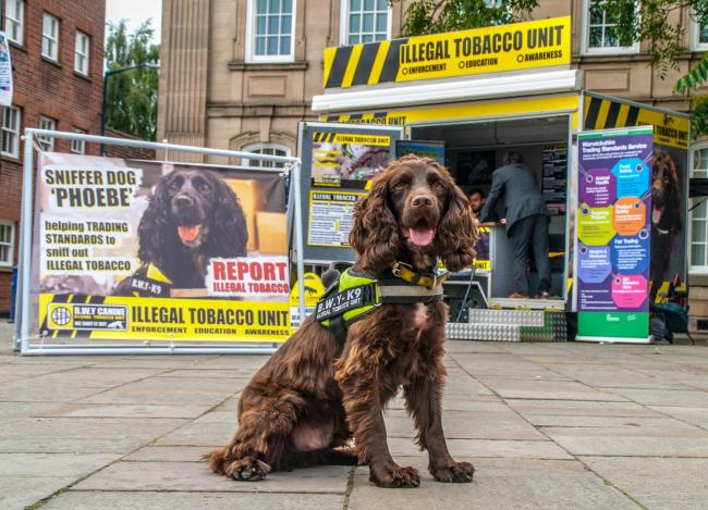 Public help is sought to snuff out illegal tobacco trade in Hampshire