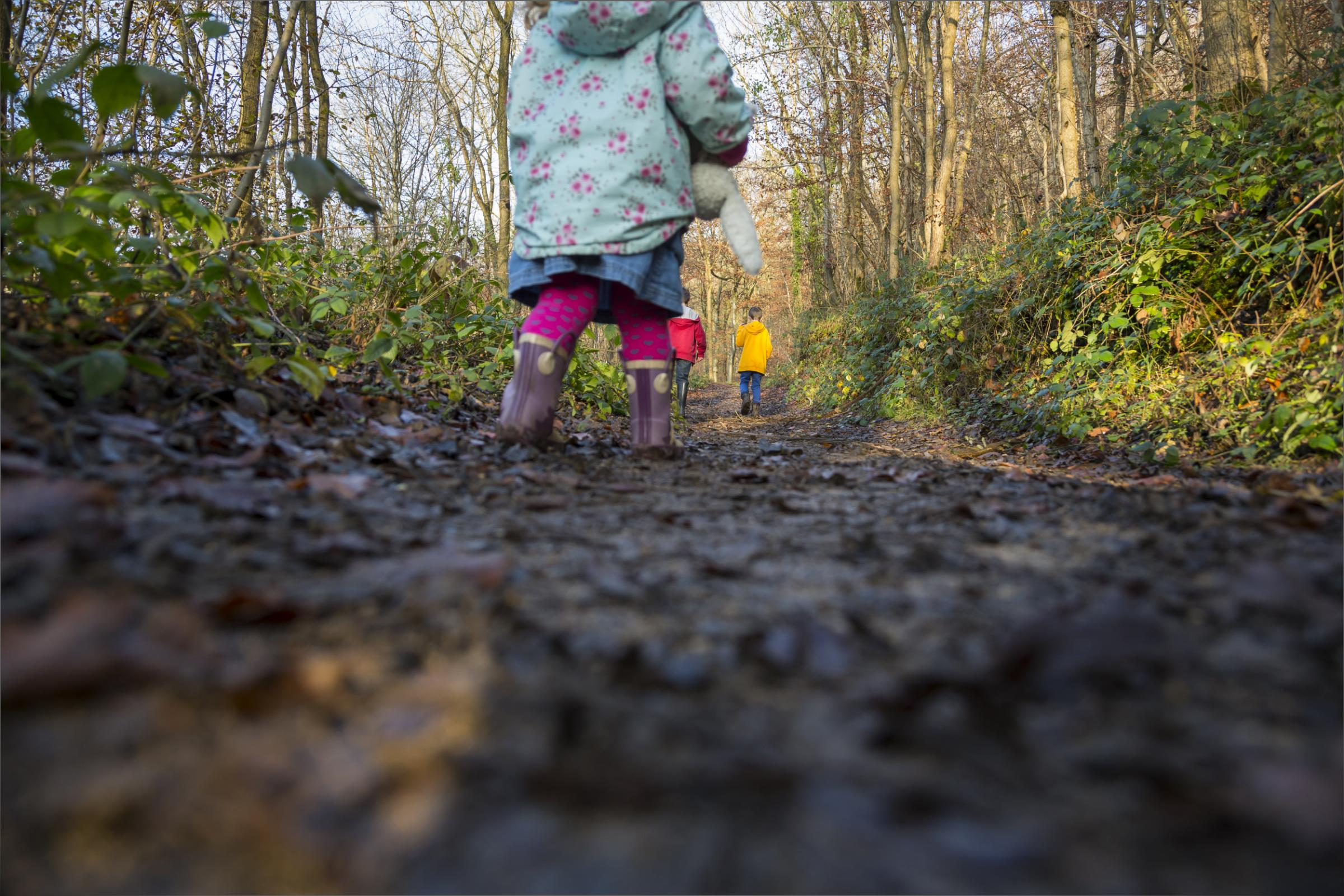 National Trust  October half-term trail 2018