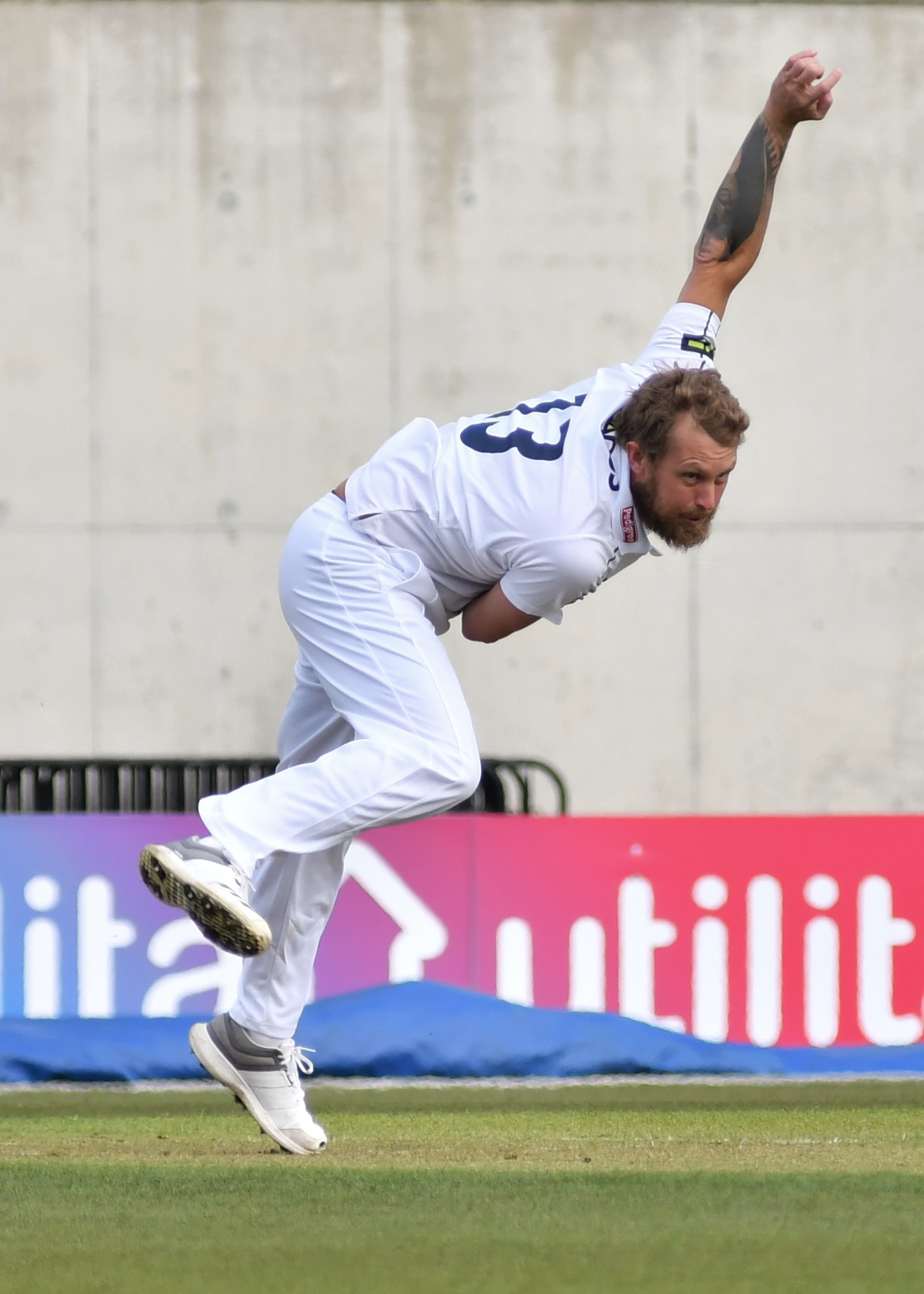 Berg In berg with bat and as hants beat sussex daily echo