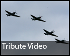 Daily Echo: A video tribute to the Spitfire