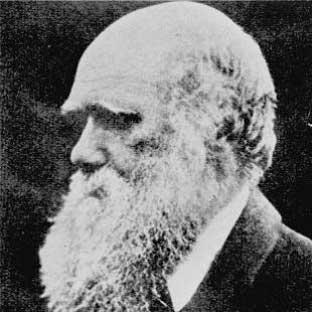Daily Echo: The life and achievements of Charles Darwin are being celebrated today - 200 years after his birth.