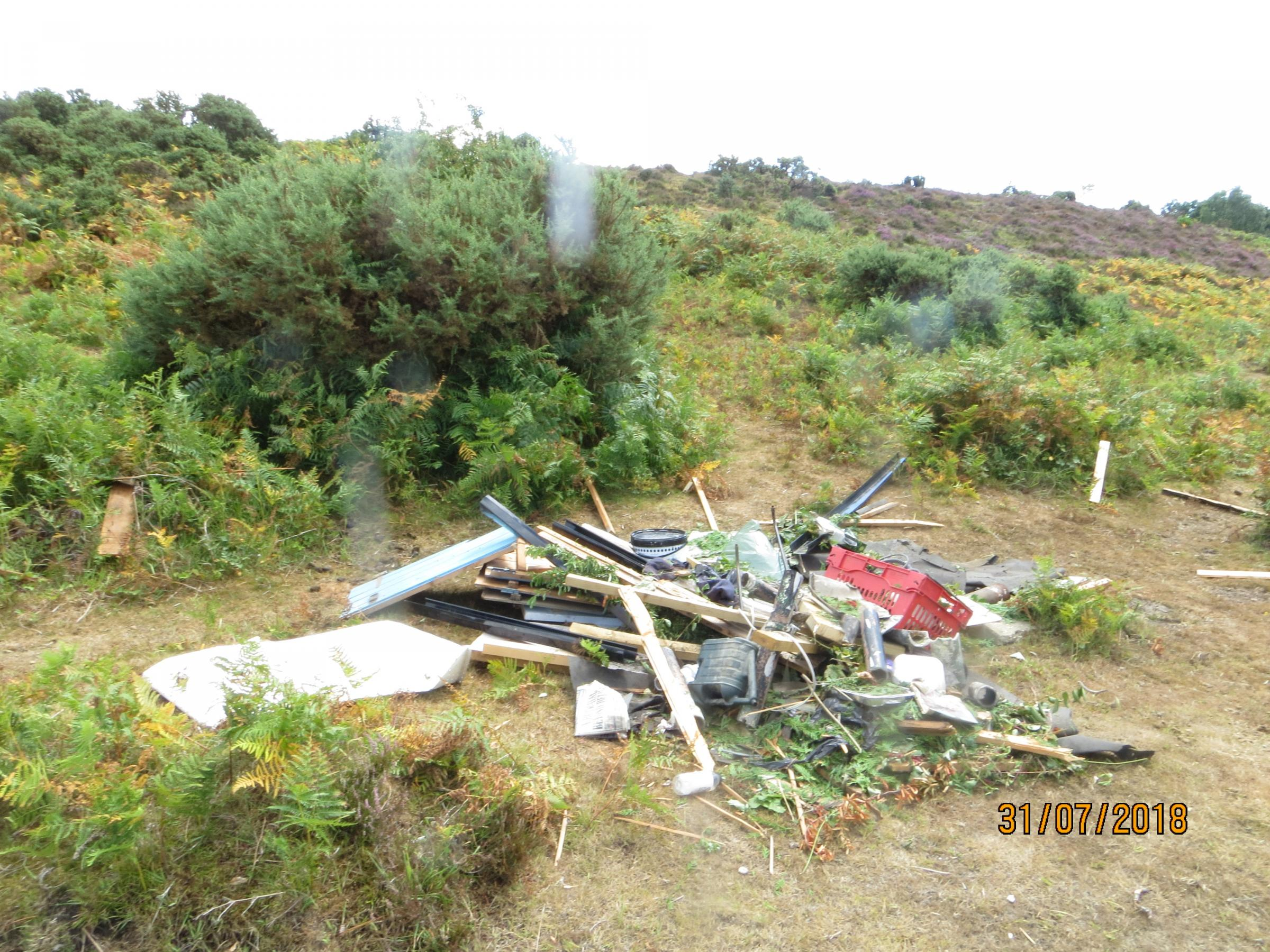 The latest rubbish dumped at Rockford Common. Photo: National Trust Images/Lee Hulin.