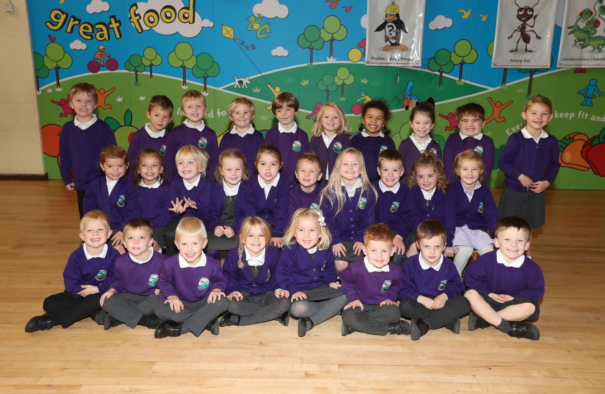 Netley Abbey Infant School First Class 2018 - 3 classes - Rabbit Class.