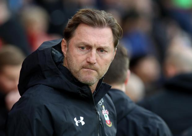 Daily Echo: Saints manager Ralph Hasenhuttl