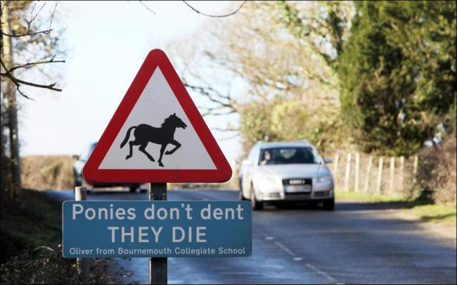 New Forest Pony warning road sign at Beaulieu. Tuesday 6th January 2015..