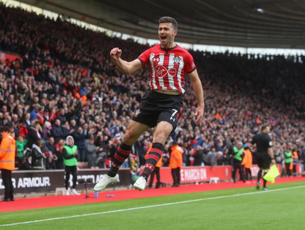Daily Echo: Shane Long celebrates his goal against Wolves