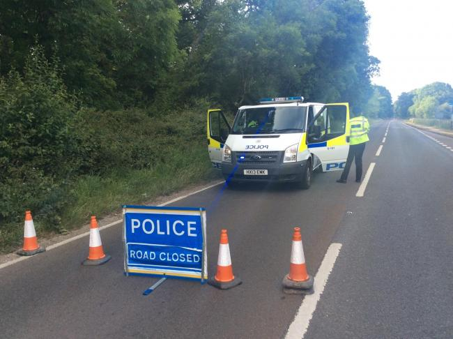 Fatal crash shuts road in New Forest | Daily Echo